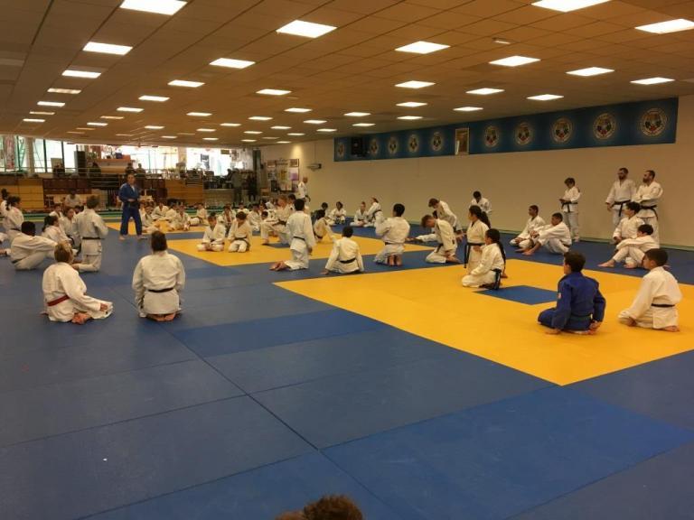 Les séances Judo